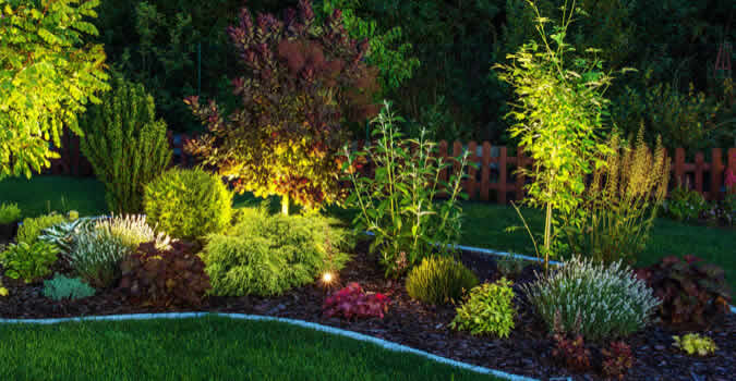 Landscape Lighting Tampa Fl Chop Landscaping