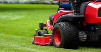 Lawn Care Tampa Fl Chop Chop Landscaping Tampa Fl